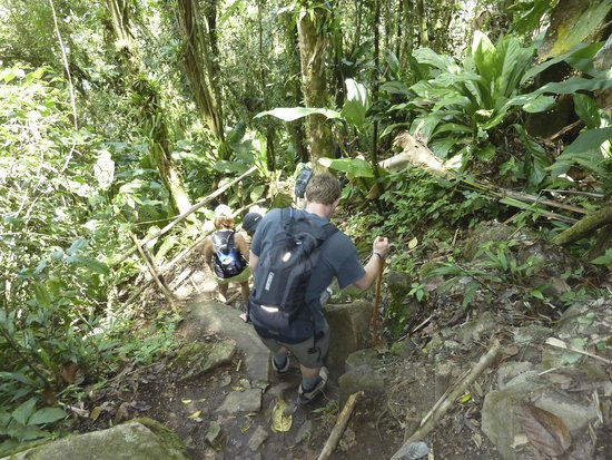 Pitons: The descent - much harder climbing up