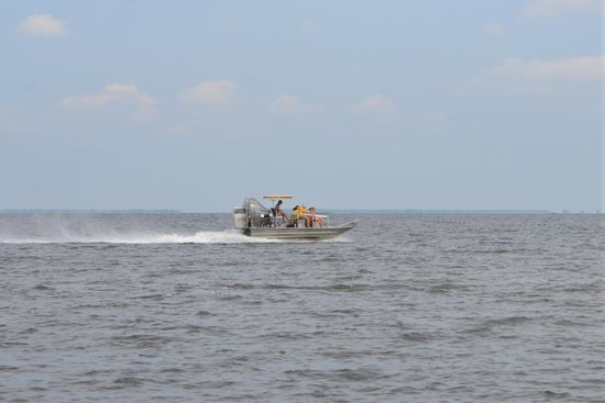 Airboat Adventures : airboat on Lake Salvador after visiting the swamps