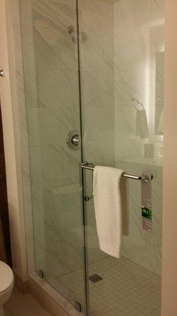 Renaissance Denver Downtown City Center Hotel: shower