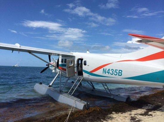Key West Seaplane Adventures : DHC-3 Otter
