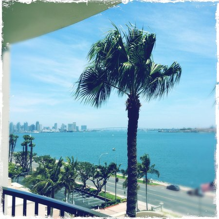 The Sheraton San Diego Hotel & Marina : The views!