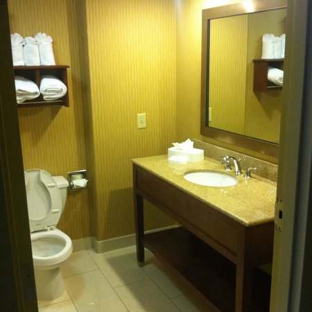 Hampton Inn - College Park: Bathroom