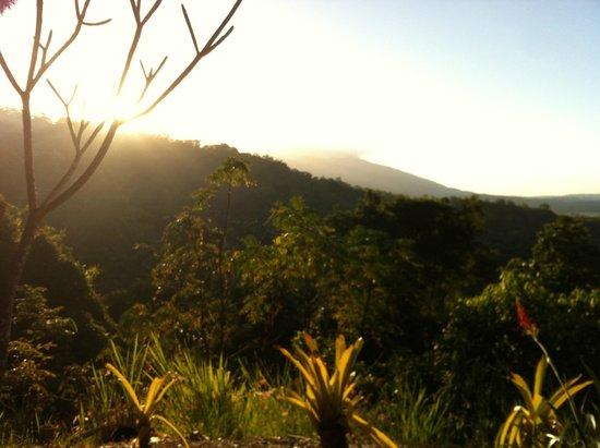 Mai Tai Resort: View from balcony