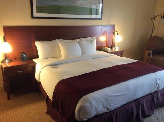 DoubleTree DFW Airport North: king bed