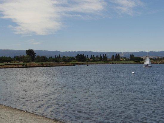 Shoreline Lake Boathouse: shorelinelake