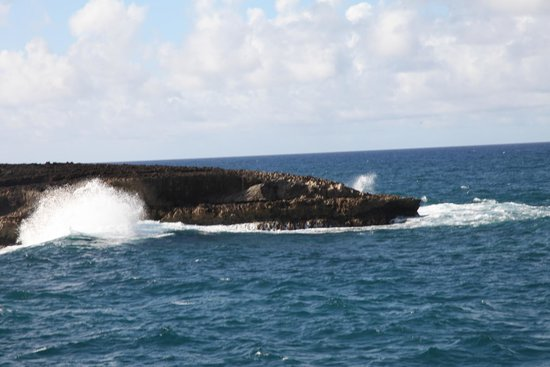 Laie Point State Wayside Park : One area of the park.