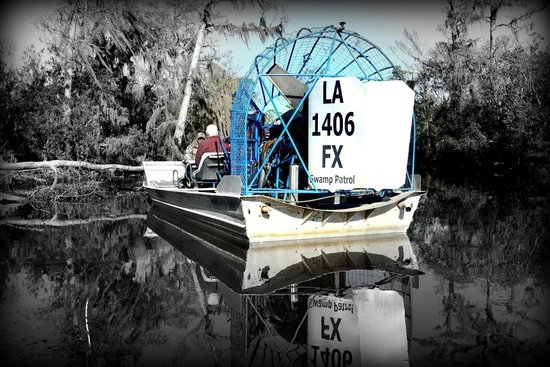 Louisiana Tour Company: Airboat