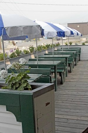 Hungry Herbie's Drive In : Outside seating is thoughtful and well designed