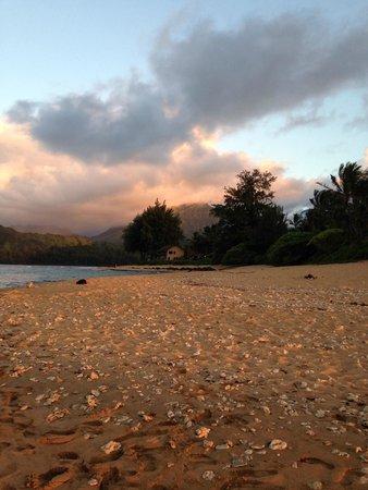 Hanalei Colony Resort: Beach on property!