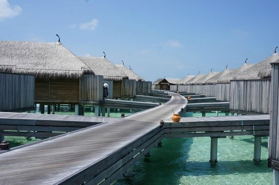 Constance Moofushi: Senior water villas (left south, right north)