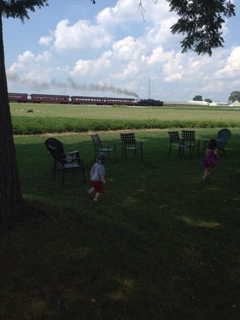 Verdant View Farm Bed and Breakfast: Little ones enjoying the great outdoors and watching the steam train go by.