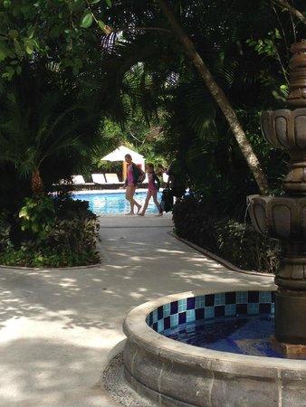 Occidental Grand Cozumel : pool
