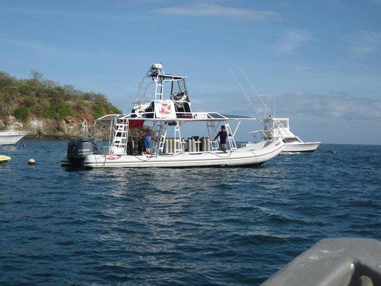 Rocket Frog Divers: The dive boat in harbor
