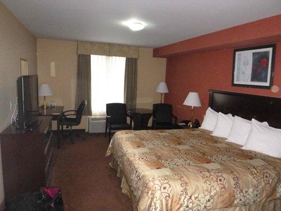 Quality Inn Orleans: Room
