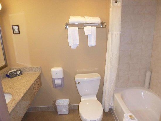 Quality Inn Orleans : Bathroom