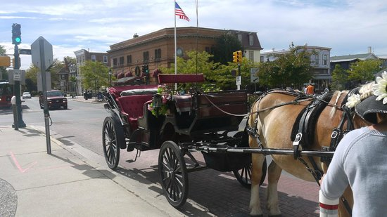 Cape May Carriage Company: Hop in !