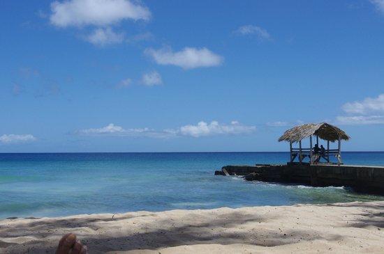 Sandy Point Beach Club: Perfect day