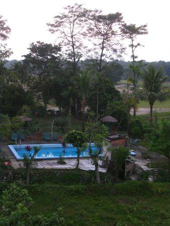 Baghmara Wildlife Resort: Several acres of resort property, something for everyone