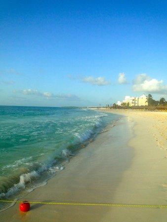 Iberostar Paraiso Beach: Stunning beach!