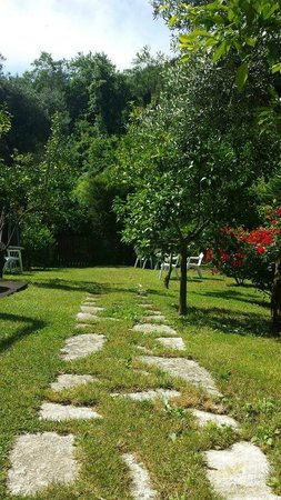 Best Western Hotel La Solara Sorrento: Garden directly behind the pool