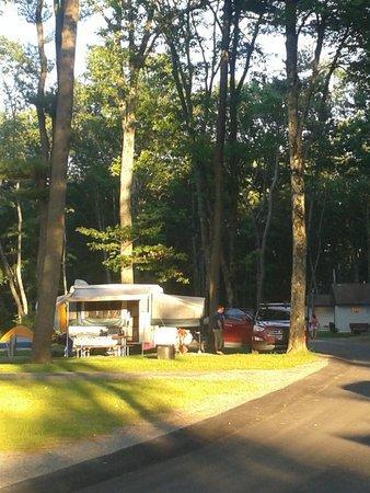 Wooden Campsite