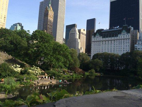 Vista do Central Park