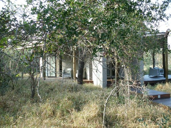 Moditlo River Lodge: Bedrooms well hidden in the bush