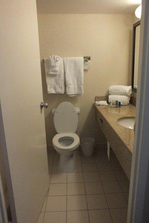 Radisson Hotel Sudbury : Tiny bathroom