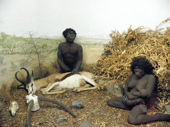 Prehistorama : Scène de chasse