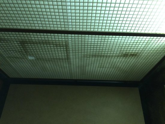 La Quinta Inn & Suites Charlotte Airport South: Mold/mildew in elevator light cover