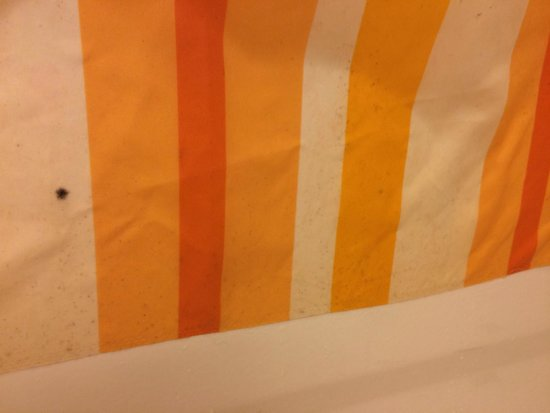 La Quinta Inn & Suites Charlotte Airport South: Mold/mildew on shower curtain