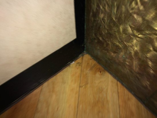 La Quinta Inn & Suites Charlotte Airport South: More elevator mold