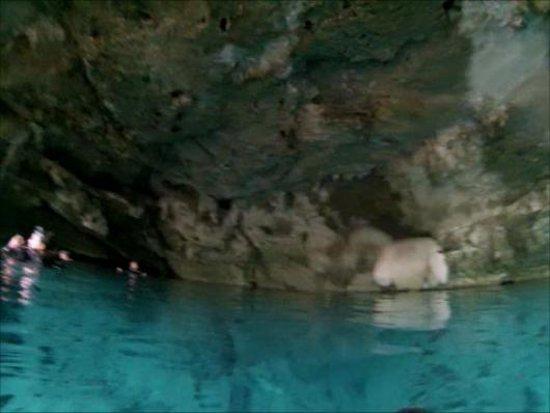 Cenotes Dos Ojos: The entrance cave