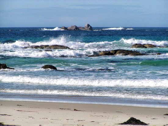 Captain Cook Holiday Park: Pristine waters