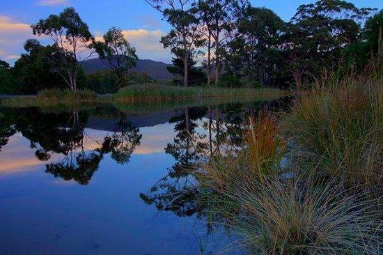 Captain Cook Holiday Park: Captain Cook Creek