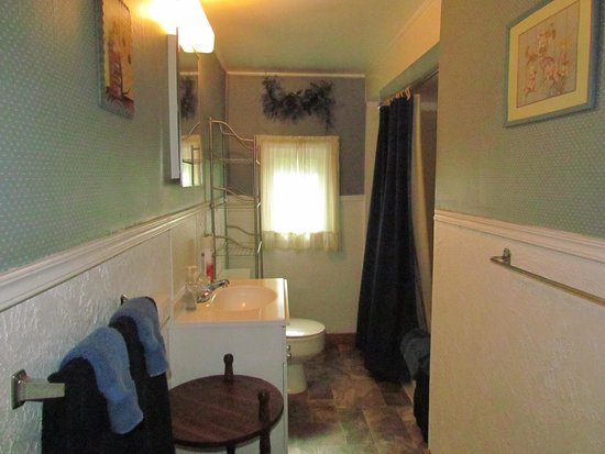 Blackhawk Lodges: Cabin 8 - the tub/shower's a bit of a black hole