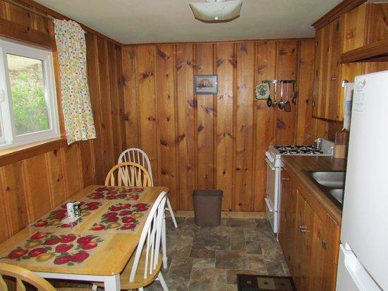 Blackhawk Lodges : Cabin 8's cozy little kitchen