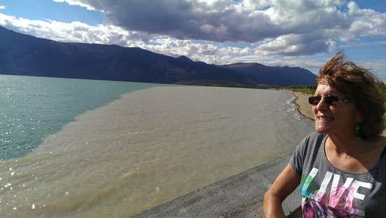 Carcross Desert : Here you can see the sandy water from the Watson River along the northern shore line of Bennett