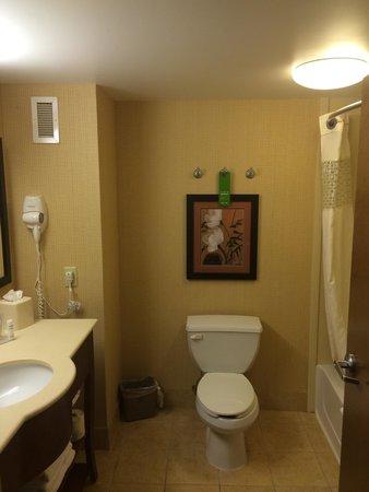 Hampton Inn Utica: Nice clean bathroom