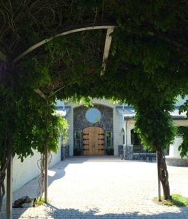 Terra Blanca Vintners: The walkway from the parking lot