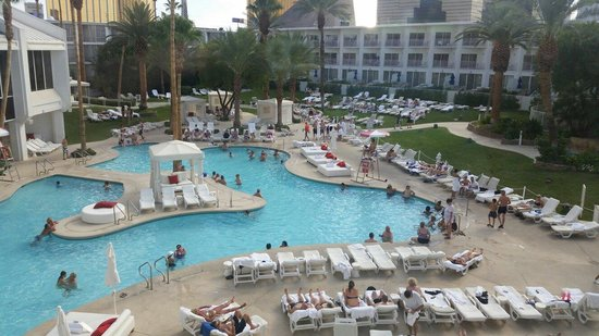 Tropicana Las Vegas - A DoubleTree by Hilton Hotel : New TropLV pool ... still one of the best on the Strip.