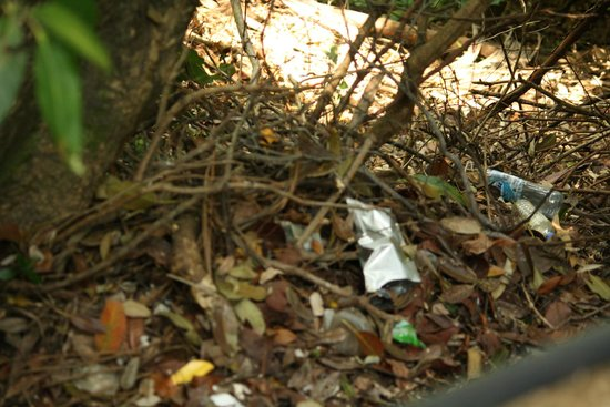 Pangkor Laut Resort : :( :( trash all along