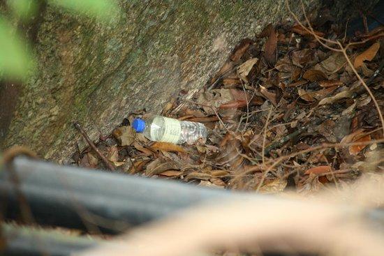 Pangkor Laut Resort: and some more trash near emerald bay