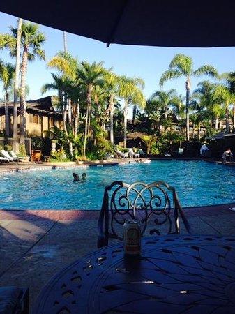 Humphreys Half Moon Inn : the fabulous pool