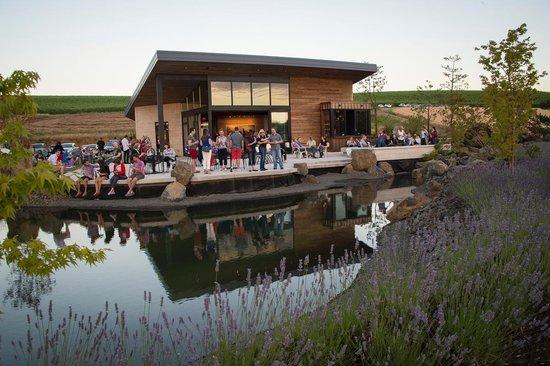 Saffron Fields Vineyard: July 5th event