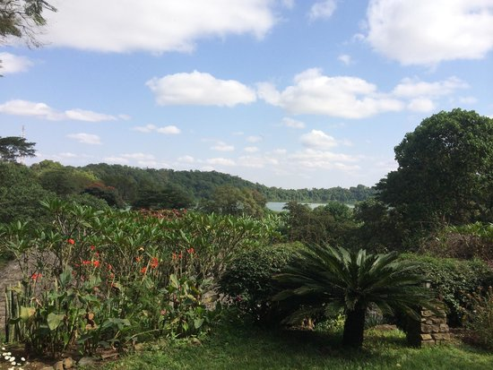 The view from Lake Duluti Serena Hotel