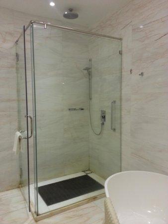 Pacific Regency Hotel Suites : Shower area