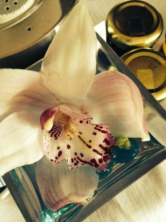 The Ritz-Carlton Georgetown, Washington, D.C. : Room Service Flower