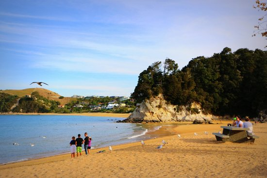 Torlesse Motels: Beach 200 Metres