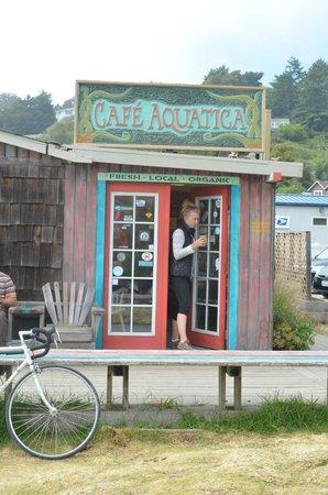Cafe Aquatica: Entrance to the Cafe